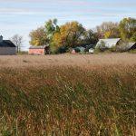 autumn farmstead