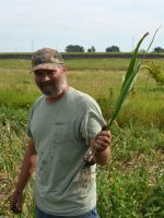 Russ holding a harvsted garlic plant