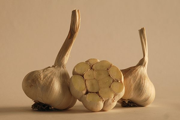 Three bulbs of Inchelium Red garlic