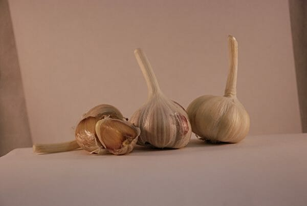 belarus culinary garlic